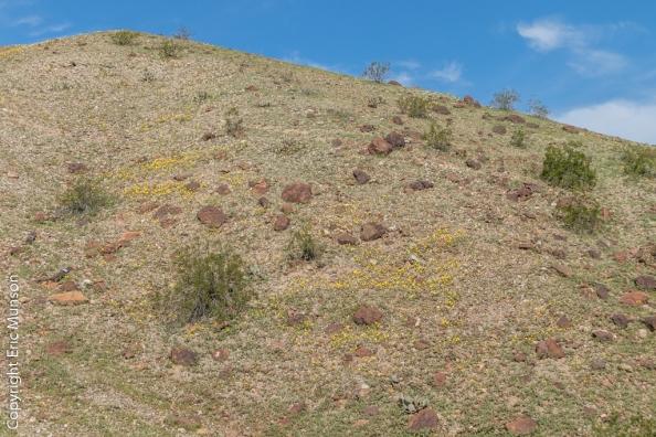 15-45-hillside